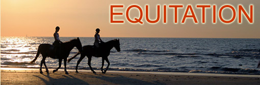 H�bergements th�me equitation