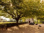 Chartreuse des Moulins